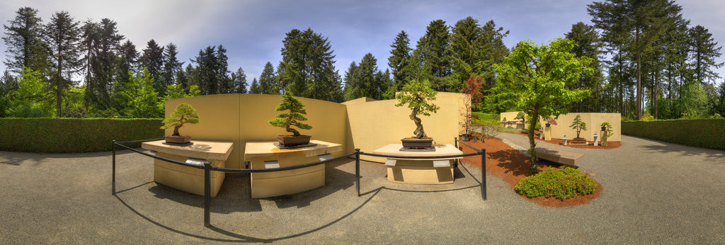 Tucker Oak Pacific Rim Bonsai Garden 360 Panorama 360cities